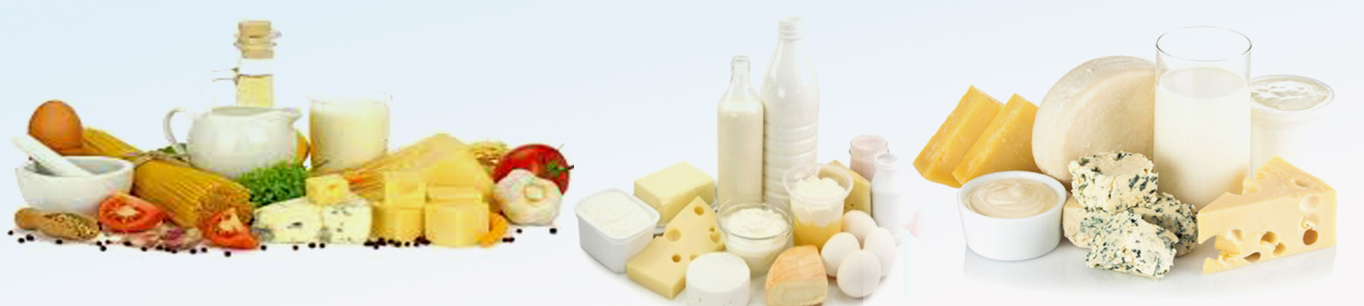 Dairy products | falconcoldstore